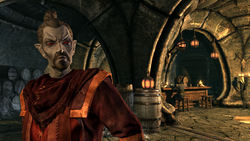 The Elder Scrolls V: Skyrim Dragonborn