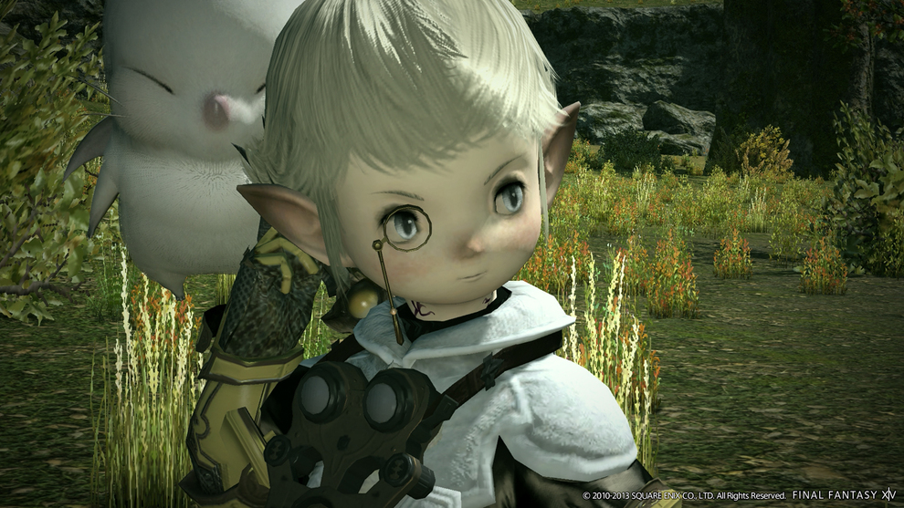 Final Fantasy XIV: A Real Reborn