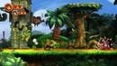 anterior: Donkey Kong Country Returns